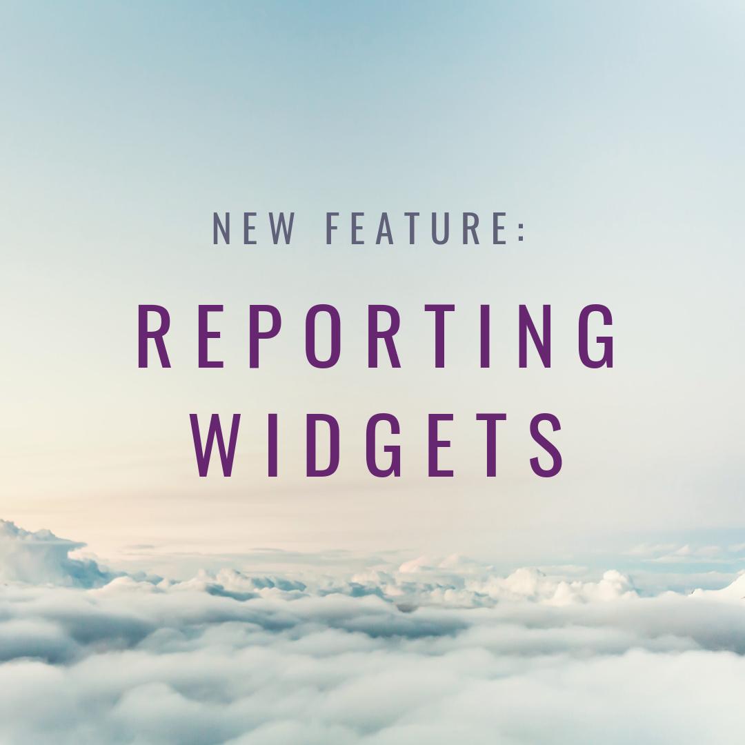 REPORTING WIDGETS